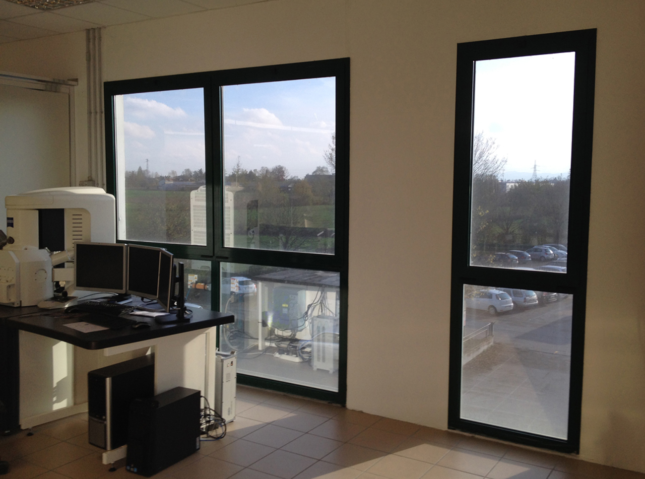 Decorazione finestre con pellicola a controllo solare e - Vetri doppi per finestre ...