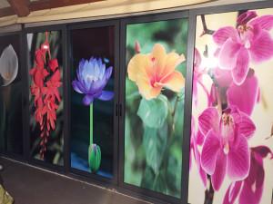 Decorazione vetrine locale con adesivi stampati in digitale