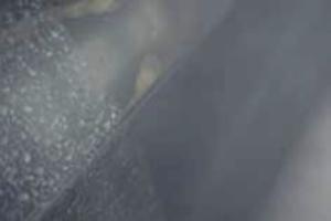 Film trasparente autopulente bodyfence hexis