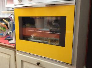 Riqualifica elettrodomestici con pellicola giallo lucido